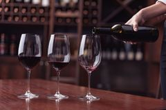 Cropped view sommelier pouring red wine from bottle into glass at table. In cellar royalty free stock photo