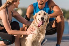 Sports couple with dog. Cropped view of sports couple with golden retriever dog in city at daytime Royalty Free Stock Images