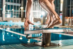 Cropped view of swimmer standing on diving board ready to jump into competition. Swimming pool Stock Photography