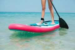 Cropped view of woman on stand up paddle board. On sea Royalty Free Stock Photography