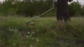Cropped widok proces ciąć zielonej trawy zdjęcie wideo