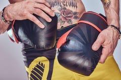 Cropped wizerunek tattoed mężczyzna jest ubranym sporty dyszy trzymający bokserskie rękawiczki, odizolowywać na szarym tle zdjęcie royalty free
