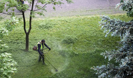 Cropper scythe man. Summer in Sofia each spring and summer the grass were be cutting Stock Photos