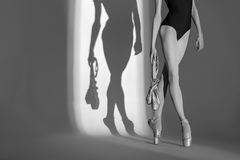 Cropping portrait of the legs graceful ballerina Royalty Free Stock Photography