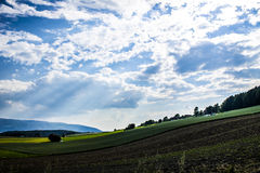 Crops and Clouds Royalty Free Stock Photography