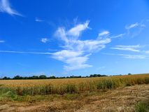 Crops in countryside. Scenic view of crop field in countryside with blue sky and cloudscape background stock images