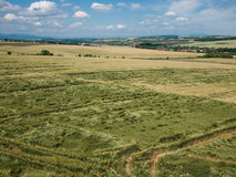 Crops damaged in a field Royalty Free Stock Photos