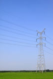 Crops and electric tower under the blue sky. North China Plain, China Stock Photography