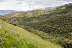 Crops and native forest in the highlands of Ecuador Royalty Free Stock Photography
