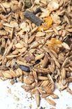 Crops natural sportive  muesli background. for horse. close up Stock Photo