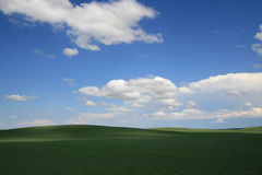 Crops Over Rolling Hills Royalty Free Stock Photo