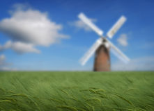 Crops and windmill royalty free stock images
