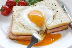 Croque madame , french ham and cheese sandwich wit. H fried egg , on white background Stock Photography