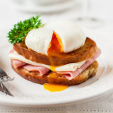 Croque madame, French Toast with Egg. Croque madame, French Toast with Poached Egg, Ham and Cheese, square Royalty Free Stock Photography