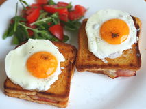 Croque madame sandwich Stock Photography