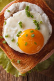 Croque madame sandwich with a fried egg close-up. vertical top v Stock Photography