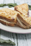 Croque-monsieur   Royalty Free Stock Images