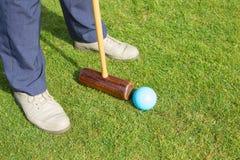 croquet Fotografia Stock