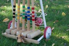croquet Immagine Stock