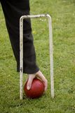 Croquet ball and hoop Royalty Free Stock Images