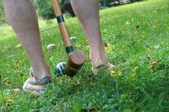 Croquet del patio trasero Fotografía de archivo