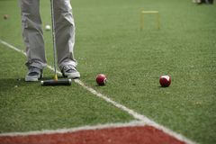 Croquet game. Royalty Free Stock Photography