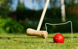 Croquet in the garden. A game of croquet is taken place on a nice summer day Stock Images