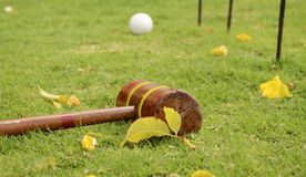 Croquet Mallet and Ball with Hoops. Outdoor games on a grass. Royalty Free Stock Image