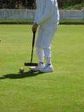 Croquet nel gioco Immagine Stock