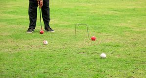 Croquet Player. He is trying to hit the ball with his mallet Stock Images