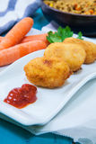 croquettes Images stock