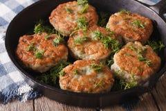 Croquettes de poisson délicieuses avec le plan rapproché d'aneth dans une casserole horizontal Photo libre de droits