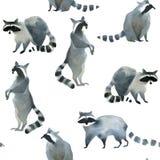 Croquis animal de forêt réaliste d'aquarelle Modèle de Seamles au sujet de plusieurs de ratons laveurs illustration stock