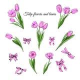Croquis coloré tiré par la main réglé avec les fleurs, les feuilles roses et les arcs de tulipe d'isolement sur le fond blanc illustration libre de droits