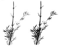Croquis décoratif magnifique distingué traditionnel chinois de bambou de main Illustration de Vecteur