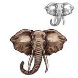 Croquis d'éléphant d'animal mammifère africain illustration libre de droits