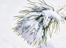 Croquis d'hiver Neige pelucheuse sur des maisons, des barrières et d'autres bâtiments images libres de droits