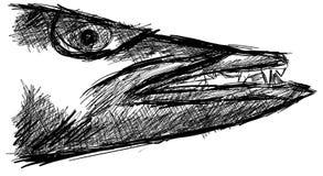 Croquis d'une tête de barracuda d'isolement Images stock