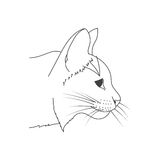 Croquis de chat Image stock