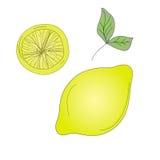 Croquis de citron Photographie stock libre de droits