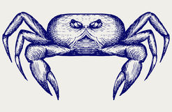 Croquis de crabe Gribouillez le type Photo stock