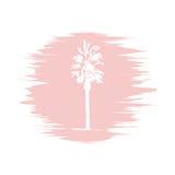 Croquis de dessin de main de logotype de palmier Palmier de vecteur Image stock