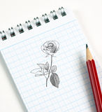 Croquis de fleur au crayon Images libres de droits