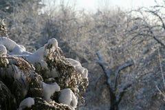Croquis de fonte d'hiver de neige Photos libres de droits