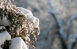Croquis de fonte d'hiver de neige Image stock