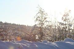 Croquis de fonte d'hiver de neige Images libres de droits