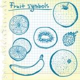 Croquis de fruit Photographie stock libre de droits