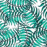 Croquis A de palmier Photographie stock libre de droits