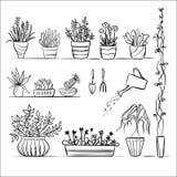 Croquis de plantes en pot et d'outils Image stock