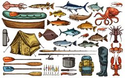 Croquis de poissons de trophée d'équipement et de pêcheur de pêche illustration stock